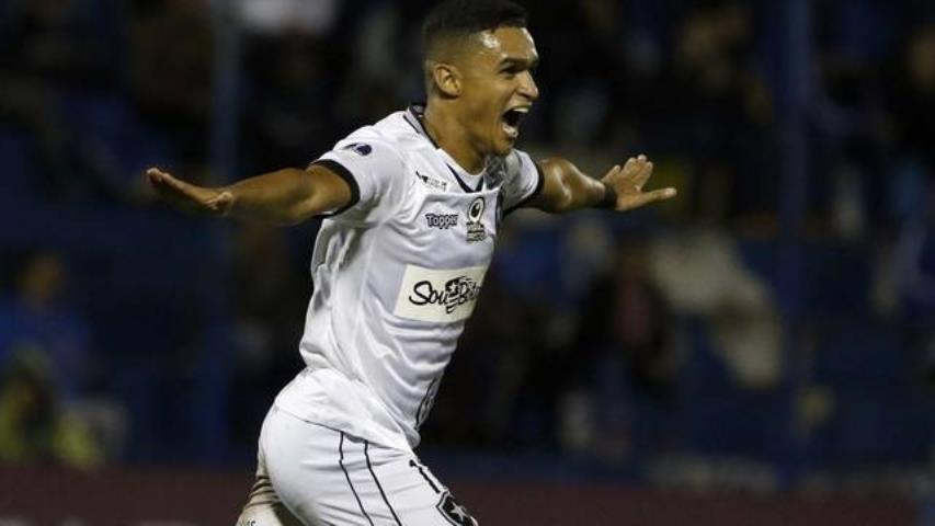 Botafogo vence e abre vantagem na Sula